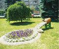 In centrul Ploiestiului aranjament floral inedit