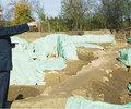 La Dumbravesti un sit arheologic de valoare exceptionala se darama asteptand sa intre in circuitul turistic